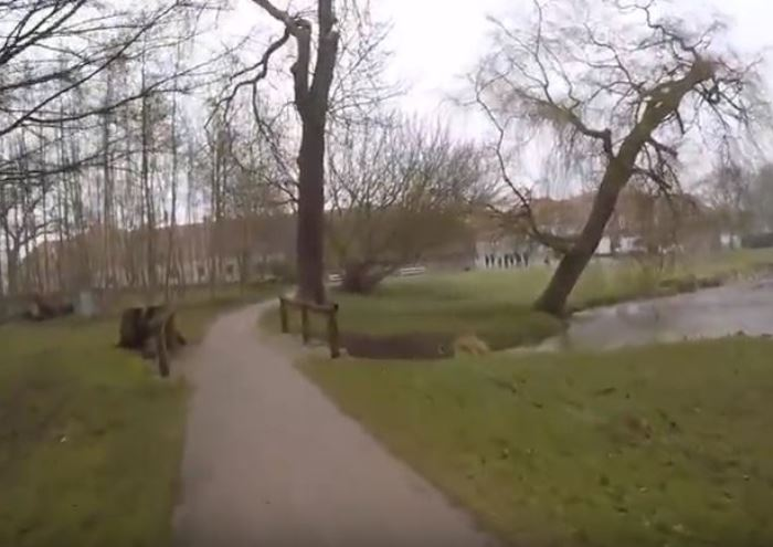 Hindsgavl Slotspark
